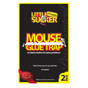 Mouse Mice Glue Trap - Kingfisher Pest Control - Poison Free, Safe & Easy (Pack of 2)